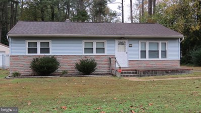 403 Hayward Avenue, Fruitland, MD 21826 - #: MDWC105858