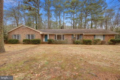 720 Burning Tree Circle, Salisbury, MD 21801 - #: MDWC106648