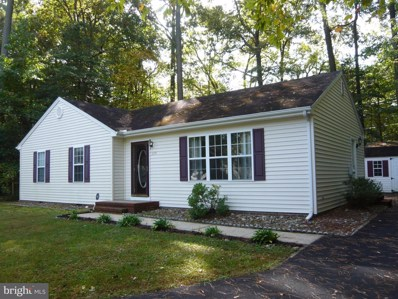 209 Broken Arrow Trail, Fruitland, MD 21826 - #: MDWC110302