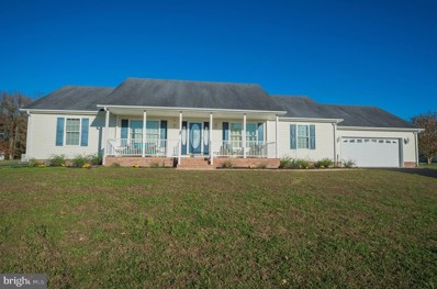 601 Carlyle Court, Hebron, MD 21830 - #: MDWC110716