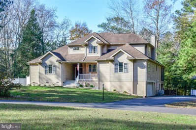 10731 Piney Island Drive, Bishopville, MD 21813 - #: MDWO118438
