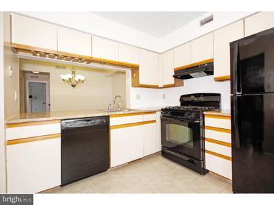4507A-  Albridge Way, Mount Laurel, NJ 08054 - #: NJBL243094