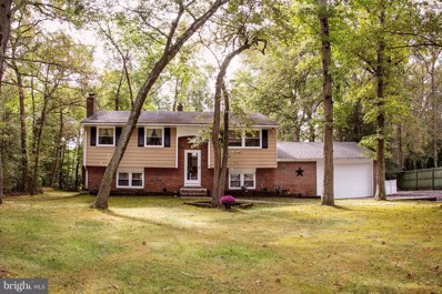 41 Ohio Trail, Medford, NJ 08055 - #: NJBL358228