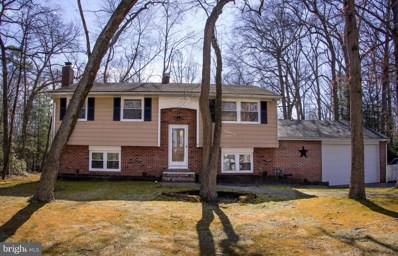 41 Ohio Trail, Medford, NJ 08055 - #: NJBL363924