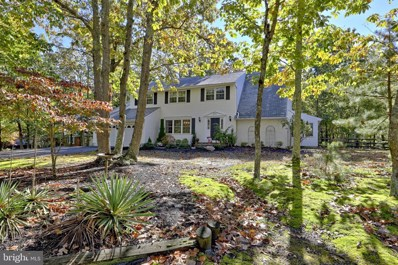127 Indian Pipe Trail, Medford, NJ 08055 - #: NJBL384080