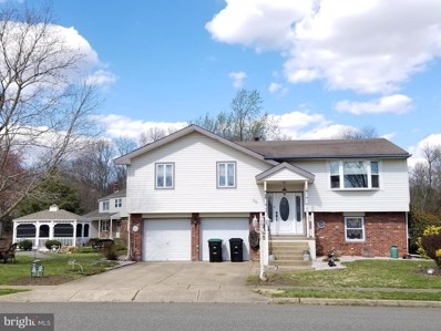 20 Lakeview Drive, Waterford Works, NJ 08089 - #: NJCD361934