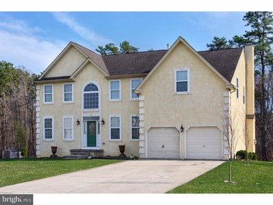 29 Beaver Dam Drive, Sicklerville, NJ 08081 - MLS#: NJCD368554