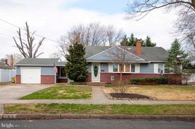 163 Hampshire Avenue, Audubon, NJ 08106 - #: NJCD389992