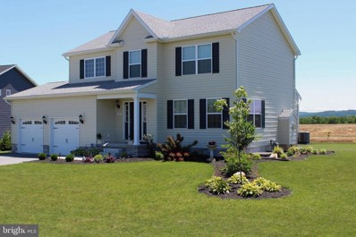 151 Meadowview Lane, New Oxford, PA 17350 - #: PAAD107210