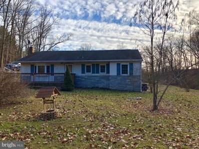 6202 Boyertown Pike, Douglassville, PA 19518 - #: PABK324802