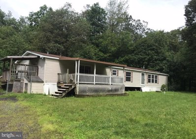 67 Bear Foot Lane, Barto, PA 19504 - #: PABK325918