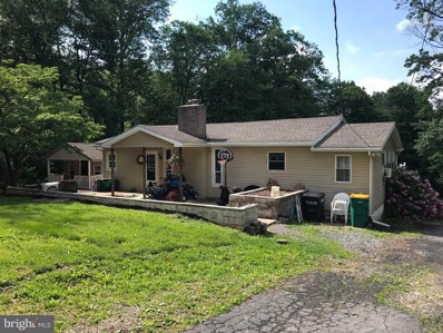 300 Mail Route Road, Sinking Spring, PA 19608 - #: PABK356812