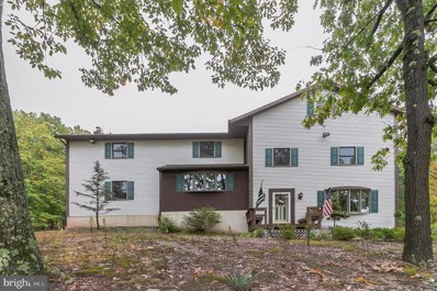 67 Oakbrook Court, Birdsboro, PA 19508 - MLS#: PABK366304