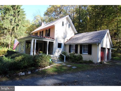 4627 Upper Mountain Road, New Hope, PA 18938 - #: PABU100430