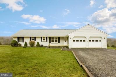 2 Dexheimer Lane, Erwinna, PA 18920 - #: PABU442866