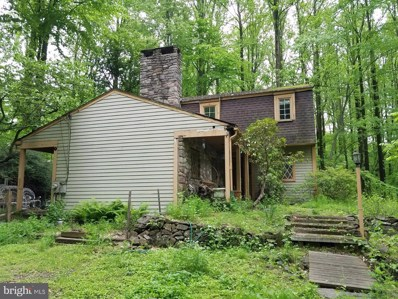 33 Solebury Mountain Road, New Hope, PA 18938 - #: PABU468700