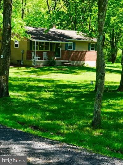 1232 Bridgeton Hill Road, Upper Black Eddy, PA 18972 - #: PABU469880