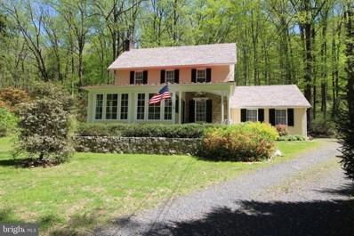 4627 Upper Mountain Road, New Hope, PA 18938 - #: PABU470538