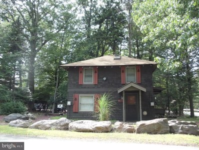 14 Spring Street, Lake Harmony, PA 18624 - #: PACC114742
