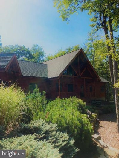 360 Wolf Hollow Road, Lake Harmony, PA 18624 - #: PACC115482