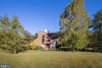 13 Phillips Lane, Chester Springs, PA 19425 - #: PACT2009024