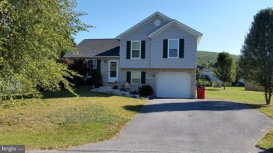 1144 Mountain Shadow Court, Fayetteville, PA 17222 - #: PAFL175392