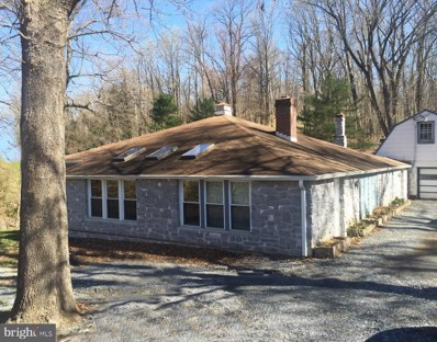2512 River Road, Bainbridge, PA 17502 - #: PALA130266