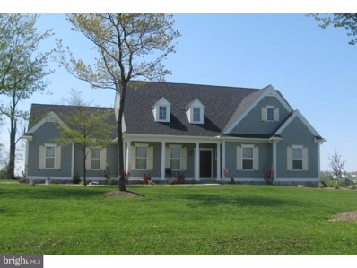 Green Lane, Quarryville, PA 17566 - #: PALA135080