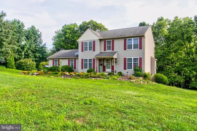 13 Apache Lane, Willow Street, PA 17584 - #: PALA136848
