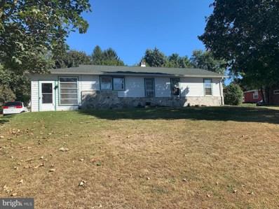 11 S Conestoga View Drive, Akron, PA 17501 - #: PALA142282