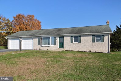 1007 E Meadow Road, Manheim, PA 17545 - #: PALA142598