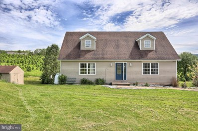 25 Richwine Road, Marysville, PA 17053 - #: PAPY100882