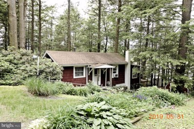98 Shoreline Drive, Pine Grove, PA 17963 - #: PASK126128
