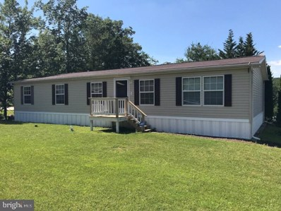 255 Angel Drive, New Ringgold, PA 17960 - #: PASK126976