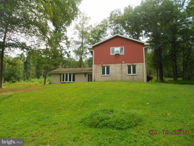 350 Blue Mountain Drive, New Ringgold, PA 17960 - #: PASK127352