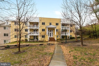 4141 S Four Mile Run Drive UNIT 303, Arlington, VA 22204 - #: VAAR140852