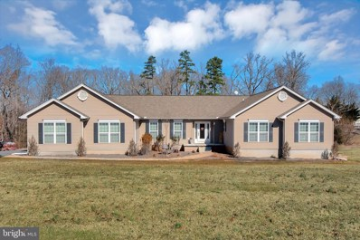 20466 Little Lignum Way, Lignum, VA 22726 - #: VACU134708