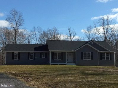 20067 Camp Road, Culpeper, VA 22701 - #: VACU139948