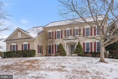 6289 Redwinged Blackbird Drive, Warrenton, VA 20187 - #: VAFQ169046