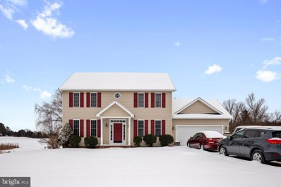 107 Branch Court, Stephens City, VA 22655 - #: VAFV162236