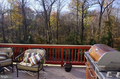 13663 Wildflower Lane, Clifton, VA 20124 - #: VAFX102250