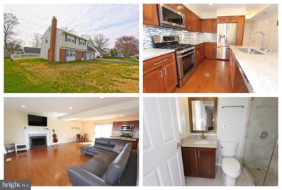 13217 Pleasantview Lane, Fairfax, VA 22033 - #: VAFX1119552