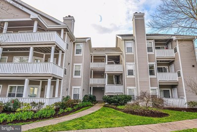 14325 Climbing Rose Way UNIT 202, Centreville, VA 20121 - #: VAFX1119722