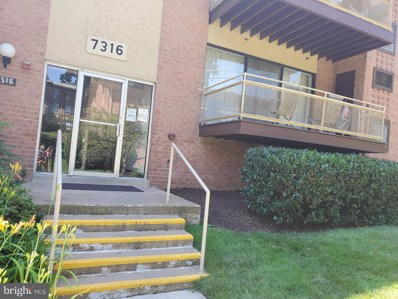 7316 Lee Highway UNIT 104, Falls Church, VA 22046 - #: VAFX1138178