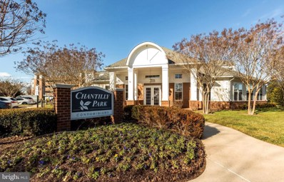 3850 Lightfoot Street UNIT 353, Chantilly, VA 20151 - #: VAFX1175340