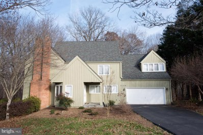 9109 White Chimney Lane, Great Falls, VA 22066 - #: VAFX301078