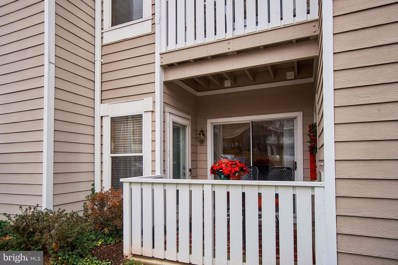 14317 Climbing Rose Way UNIT 101, Centreville, VA 20121 - MLS#: VAFX505898