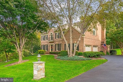 3405 Nathaniel Oaks Court, Oak Hill, VA 20171 - #: VAFX746380