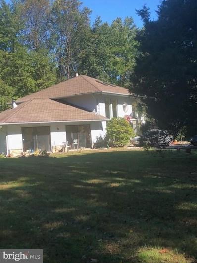 11208 Georgetown Pike, Great Falls, VA 22066 - #: VAFX993200