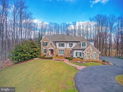 9998 Blackberry Lane, Great Falls, VA 22066 - #: VAFX997446
